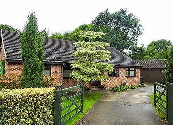Thumbnail 4 bed bungalow for sale in Bretby Road, Linacre Woods, Chesterfield
