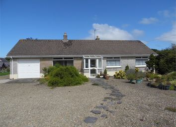 Thumbnail 3 bed detached bungalow for sale in Ger-Y-Llan, Goat Street, Newport, Pembrokeshire