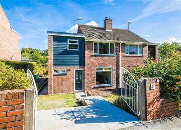 48, Carter Knowle Avenue, Carter Knowle S11