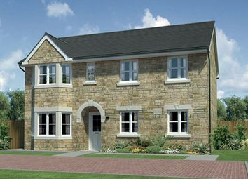"Thumbnail 4 bed detached house for sale in ""Hollandswood"" at Harrowslaw Drive, Hamilton"