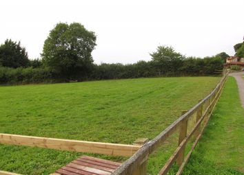 Thumbnail Land for sale in Cadhay, Ottery St. Mary