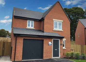 "Thumbnail 3 bed property for sale in ""Staveley"" at Langton Road, Norton, Malton"