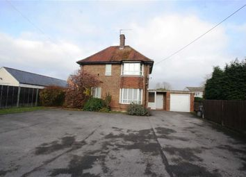 Thumbnail 4 bed detached house to rent in Lion Mews, Newbury Street, Lambourn, Hungerford