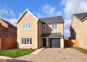 Thumbnail 5 bed detached house for sale in Buckden Road, Brampton, Huntingdon