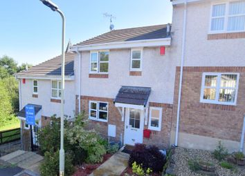 Thumbnail 3 bed terraced house for sale in Meadow Brook, Whitchurch, Tavistock