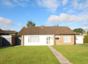 Thumbnail 3 bed detached bungalow to rent in Highwood Drive, Orpington