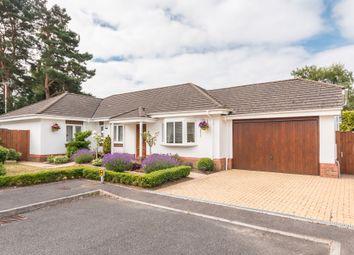 Thumbnail 4 bed detached bungalow for sale in Brockwood, St Leonards, Ringwood