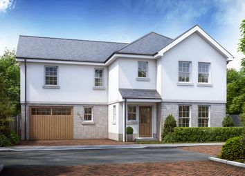 Thumbnail 4 bed detached house for sale in The Camellia, Mayhew Gardens, Plympton