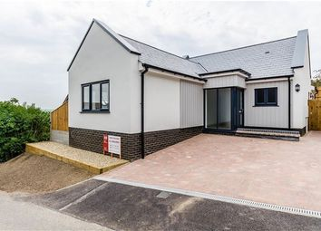 Thumbnail 3 bed detached bungalow for sale in Red Lion Lane, Sutton, Ely