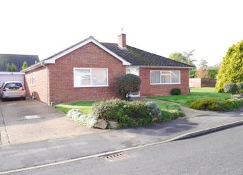 Thumbnail 3 bed detached bungalow to rent in Northwold, Ely