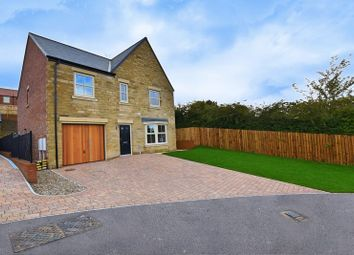 Thumbnail 4 bed detached house for sale in Old School Close, Alnwick