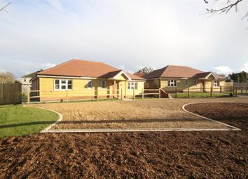 Thumbnail 3 bed detached bungalow for sale in Forest Avenue, Cowplain, Waterlooville