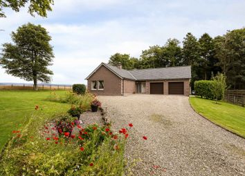 Thumbnail 3 bedroom bungalow for sale in Battledykes, Forfar