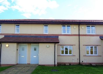 Thumbnail 3 bed terraced house to rent in Edward Pease Way, West Park