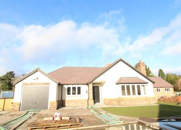 Thumbnail 4 bedroom detached bungalow for sale in Hermitage Close, Westbury, Shrewsbury