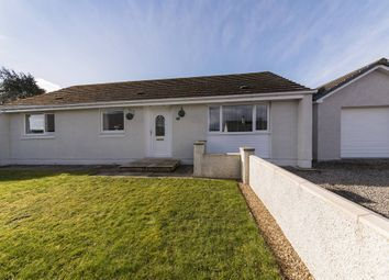 Thumbnail 3 bed bungalow for sale in Craig Avenue, Tain, Highland