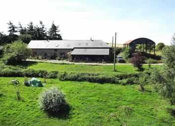 Thumbnail 3 bed barn conversion for sale in Gwern Y Go Hill Farm, Sarn, Newtown, Powys