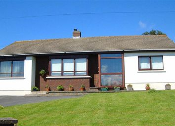 Thumbnail 3 bed detached bungalow for sale in Tanygroes, Cardigan