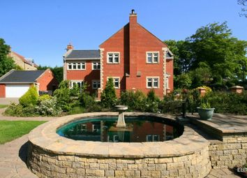 Thumbnail 7 bed detached house for sale in Waldridge, Chester Le Street