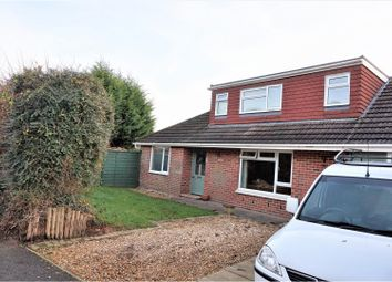 Thumbnail 4 bed detached bungalow for sale in Gypsy Lane, Waterlooville