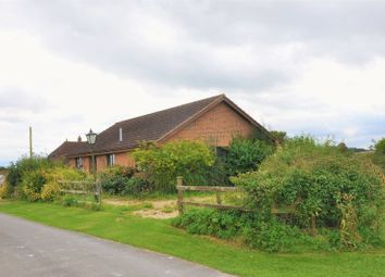 Thumbnail 3 bed detached bungalow for sale in Palestine, Andover