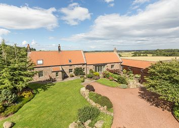 Thumbnail 4 bedroom cottage for sale in Low Nest Cottage, Ellingham, Chathill, Northumberland