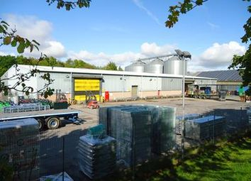 Thumbnail Light industrial to let in Coxford Farm Depot, Overton Road, Micheldever, Winchester, Hampshire