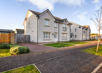 Thumbnail 3 bed semi-detached house for sale in Earl Matthew Avenue, Arbroath