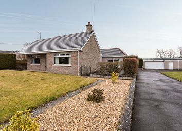 Thumbnail 3 bed bungalow for sale in Guthrie Street, Letham, Angus