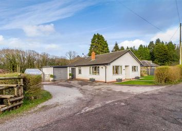 Thumbnail 3 bed bungalow for sale in Ceciliford, Trelleck, Monmouth