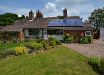 Thumbnail 3 bed semi-detached bungalow for sale in Birch Rise, Ashley Heath, Market Drayton