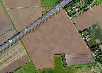 Thumbnail Commercial property for sale in Land Off, West Drove South, Walpole Highway, Wisbech, Cambridgeshire
