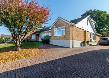 Thumbnail 4 bed bungalow for sale in Rayleigh, Essex, Uk