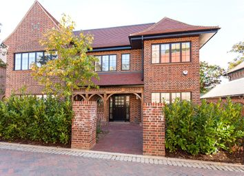 Thumbnail 5 bed detached house to rent in Chandos Way, London