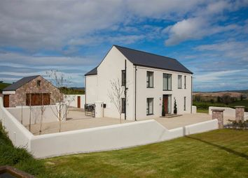 Thumbnail 4 bedroom detached house for sale in 87, Peartree Hill, Belfast
