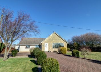 Thumbnail 4 bed bungalow for sale in Montrose