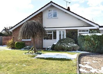 Thumbnail 4 bed detached bungalow for sale in Walmer Road, Woodley, Reading