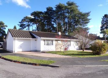 Thumbnail 3 bed bungalow for sale in Greenwood Copse, St. Ives, Ringwood