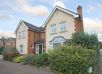 Thumbnail 4 bed detached house to rent in Kingston Upon Thames, Surrey