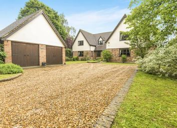 Thumbnail 5 bedroom detached house for sale in Foulden, Thetford, Norfolk