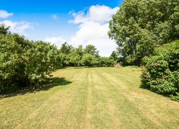 Thumbnail 2 bed detached bungalow for sale in Rookery Drove, Beck Row, Bury St. Edmunds