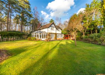 Thumbnail 3 bed detached house for sale in Heath House Road, Woking, Surrey