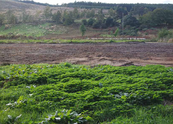 Thumbnail Land for sale in Chapel Hill, Rothes