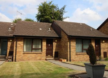Thumbnail 1 bedroom bungalow to rent in Springbank Gardens, Falkirk