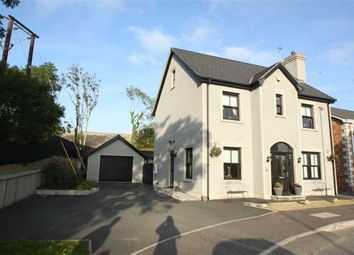 Thumbnail 6 bed detached house for sale in Magheraknock Park, Ballynahinch, Down