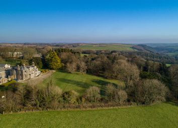 Thumbnail 13 bedroom detached house for sale in Tredethy, Bodmin