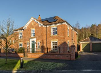 Thumbnail 5 bedroom detached house for sale in Mallison Hill Drive, Easingwold, York