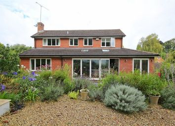 Thumbnail 4 bed detached house to rent in Turners Gardens, Sevenoaks