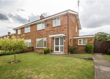Thumbnail 3 bed semi-detached house for sale in Butts Green, Whittlesford, Cambridge