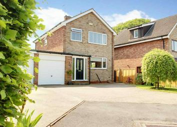 Thumbnail 3 bed link-detached house for sale in All Hallows Road, Walkington, Beverley